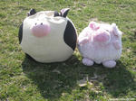 cow and pig on grass